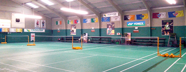 Leinster Badminton Competition