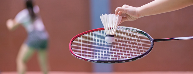 Learn play Badminton - Leinster Badminton
