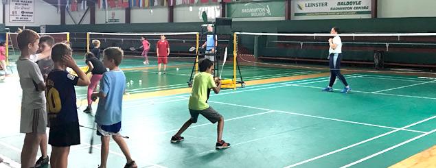Leinster Badminton Schools
