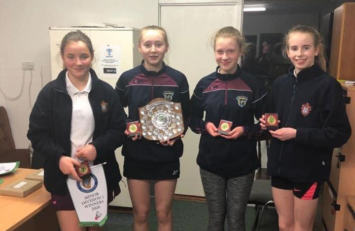 Leinster Badminton Female Competition