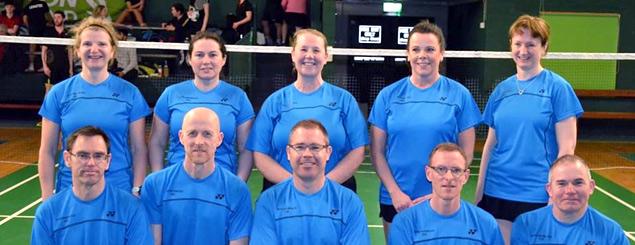 Leinster Badminton Union Senior Squads